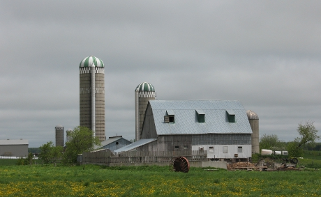 View of farm barn and silos